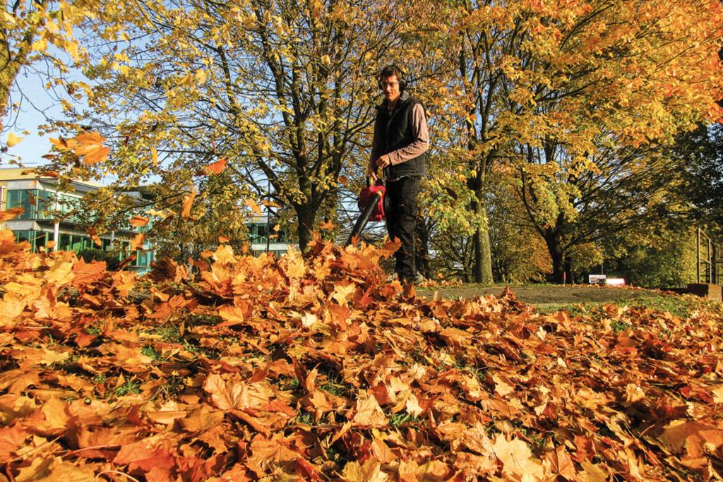 Puhalnik za listje